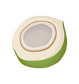half of young green coconut organic and tasty vector image