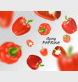 isolated flying vegetables falling sweet red vector image