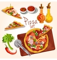 Pizza ingredients set vector image