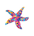sea star sign stained glass icon on white vector image