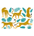 set leopards and tropical leaves trendy vector image vector image
