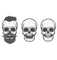 bearded skull isolated on white background vector image vector image
