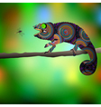 Chameleon and dragonfly vector image vector image