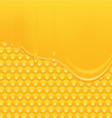 Honey Background 2 vector image