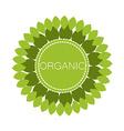 organic logo vector image vector image