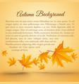 abstract bright autumn seasonal template vector image vector image