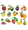cute fruit characters vector image vector image