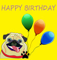 cute pug with balloons - perfect newborn vector image vector image