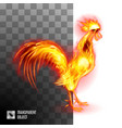 fiery golden rooster on transparent background vector image vector image