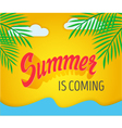 hand written summer lettering vector image vector image