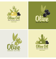 olives and oil vector image vector image
