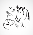 Pets Horse dog cat bird butterfly dragonfly vector image vector image