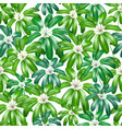 seamless floral nature background pattern with vector image vector image