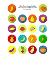 Vegetables and fruits round icons vector image