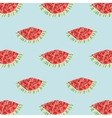 Geometric background with watermelon vector image vector image
