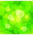 Green bokeh effect abstract background vector image vector image