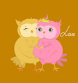greeting card with cute owls in love vector image