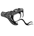 poisonous snake head in engraving style design vector image vector image