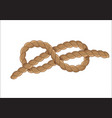 sailor rope knot symbol vector image