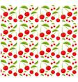 cherry fruit seamless pattern design vector image