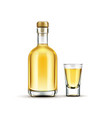 gold tequila bottle and shot glass mock up drink vector image