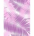 Palm Leaf Frame Background vector image vector image