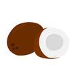 coconut with broken half icon healthy eating vector image vector image