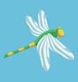 dragonfly in the sky vector image