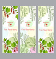 herbal tea collection five-flavor berry banner vector image vector image