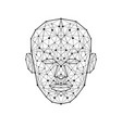 human face low polygon wireframe mash head shape vector image