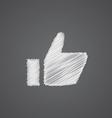 ok sketch logo doodle icon vector image