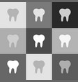 tooth sign grayscale version vector image vector image