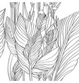 canna leaves pattern vector image vector image