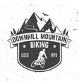 downhill mountain biking vector image vector image