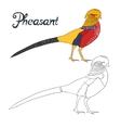 Educational game coloring book pheasant bird vector image
