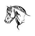 horse portrait 2 vector image