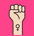 symbol of feminist movement vector image