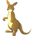 adult kangaroo vector image