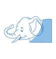 circus elephant as acrobat animal standing trick vector image vector image