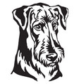 decorative portrait dog airedale terrier vector image vector image
