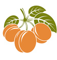 Harvesting symbol fruits isolated Ripe organic vector image vector image