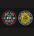set college new york city brooklyn vector image