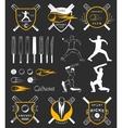 Set of Badges Cricket vector image vector image