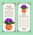 vintage label with viola plant vector image