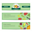 template design horizontal banner with the decor vector image