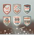 Baseball sport emblem vector image