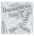 Brief History of Osteoarthritis and Back Pain Word vector image vector image
