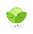 cute cartoon cabbage vector image vector image