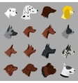 Dog icons set flat style vector image vector image