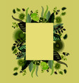 exotic of tropical leaves vector image